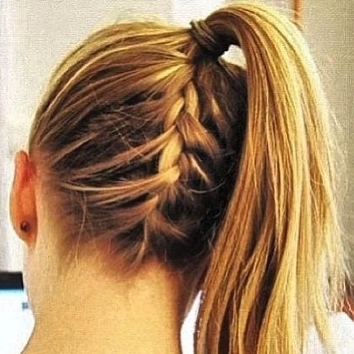 5 Best Braided Ponytail Hairstyles To Look You Cool In Trendy Ponytail Hairstyles With French Plait (View 24 of 25)
