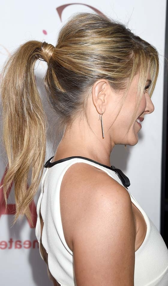 53 Easy To Do Ponytail Hairstyles For Girls Inside Stylish Low Pony Hairstyles With Bump (View 14 of 25)