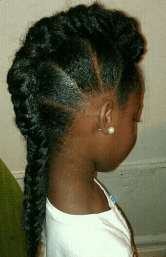 6 Edgy Braided Mohawk Hairstyles For Black Women In 2014 With Regard To Braided Ponytail Mohawk Hairstyles (View 14 of 25)