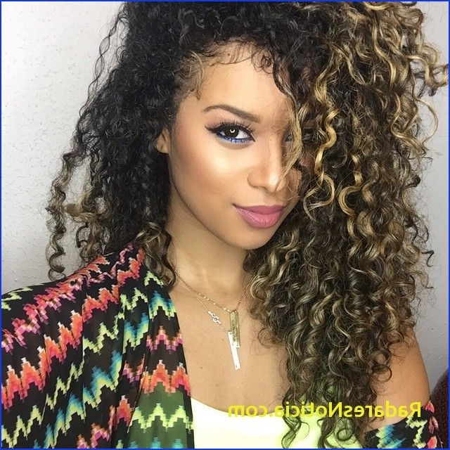 6 List Black Curly Hair With Blonde Highlights | Radaresnoticia Within Highlighted Afro Curls Ponytail Hairstyles (View 17 of 25)