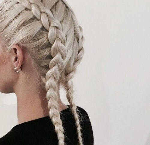 Beautiful Braided Hairstyles To Try In 2018 | Braids For Dayssss Intended For Double Braided Hairstyles (View 4 of 25)