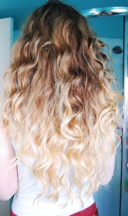 Beauty / Blonde Ombre Hair Sharedlynn On We Heart It Intended For Brown To Blonde Ombre Curls Hairstyles (View 9 of 25)
