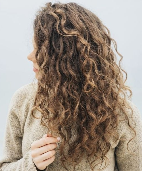 Best Long Curly Hairstyles 2018 To Make You Pretty And Stylish Within Lush And Curly Blonde Hairstyles (View 21 of 25)