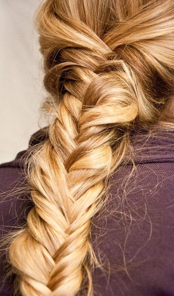 Blonde Fishtail Braid (View 4 of 25)