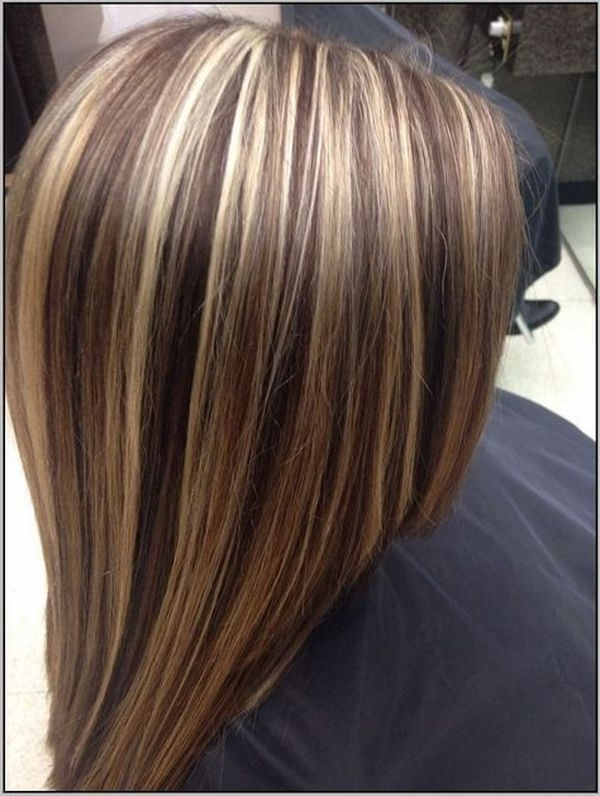 Blonde Highlights Ideas, Best Brown Hair With Blonde Highlights Inside Light Brown Hairstyles With Blonde Highlights (View 19 of 25)