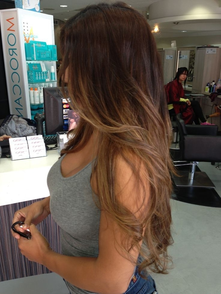 Blonde Ombre Effect On Long Hair | Hairstyles | Hair Photo Throughout Brown Sugar Blonde Hairstyles (View 12 of 25)