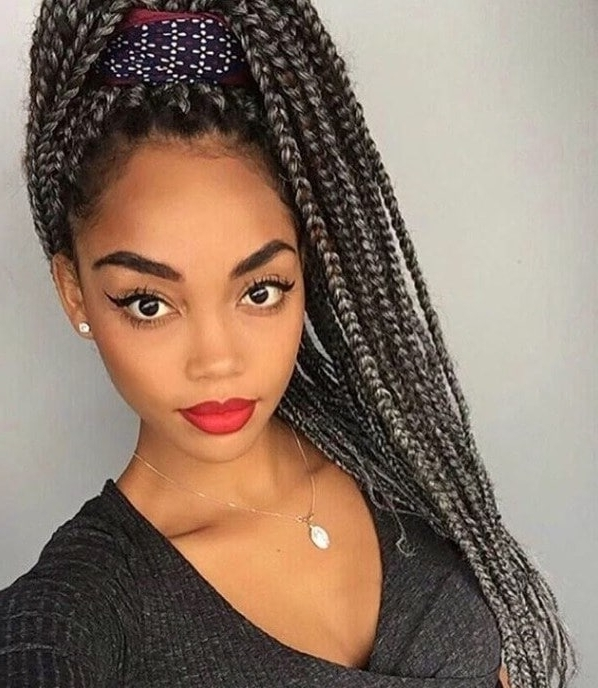 Featured Photo of Box Braids Pony Hairstyles