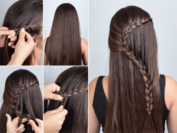 Braid Hairstyles For Long Hair, Braid Hairstyles, How To Do Braids Regarding A Layered Array Of Braids Hairstyles (View 18 of 25)