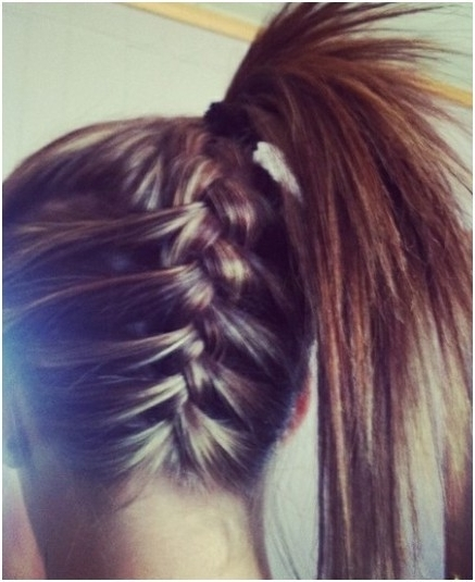 Braid Into Ponytail: Long Hairstyles – Popular Haircuts Intended For Braid Into Pony Hairstyles (View 14 of 25)