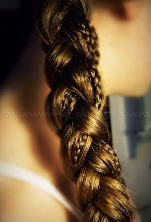 Braided Hairstyles – Simple Ponytail Braid With Micro Braid Accents Regarding Micro Braid Ponytail Hairstyles (View 12 of 25)