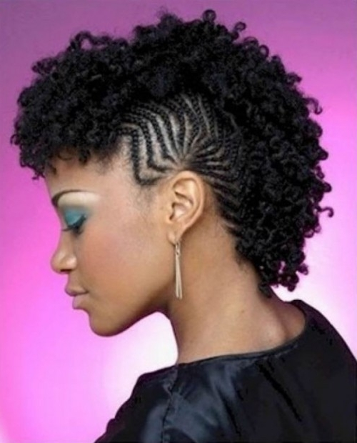 Braided Mohawk (1) – Glamorous Hairstyles Within Braided Hawk Hairstyles (View 9 of 25)