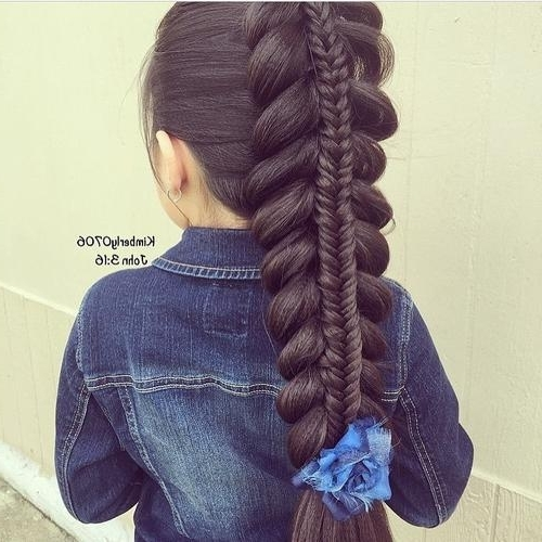 Braids For Kids – 40 Splendid Braid Styles For Girls – Cheap Little In Ponytail And Lacy Braid Hairstyles (View 17 of 25)