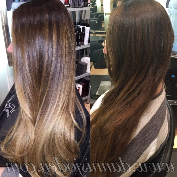 Brunette Balayage & Hair Highlights : Cool Brunette Base Melting With Beige Balayage For Light Brown Hair (View 25 of 25)