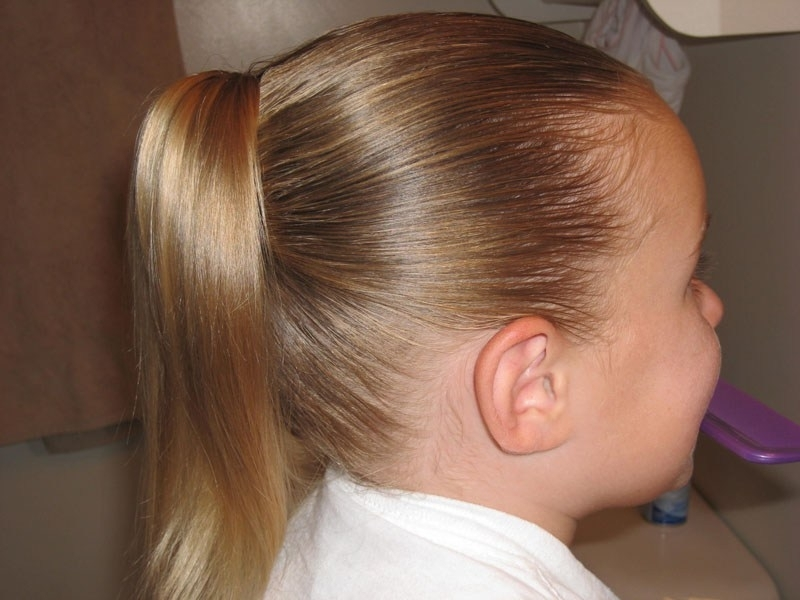 Cascading Waterfall Ponytail – Babes In Hairland With Regard To Cascading Ponytail Hairstyles (View 8 of 25)