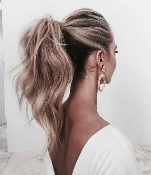 Chic Ponytail (View 20 of 25)