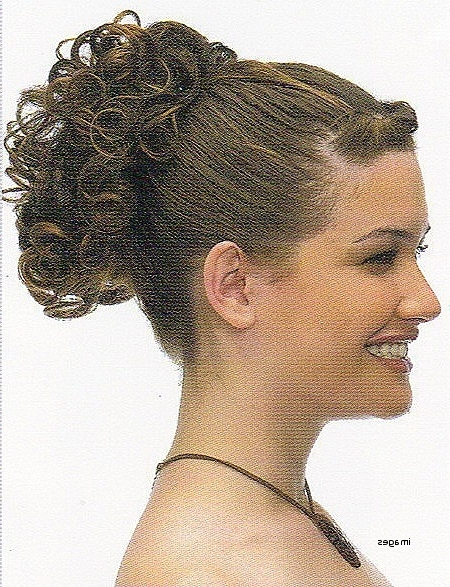 Curly Hairstyles In A Ponytail Lovely Charming Short Curly Hair With With Regard To Pony Hairstyles With Curled Bangs And Cornrows (View 15 of 25)