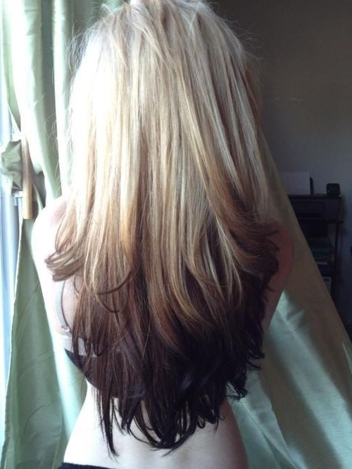 Cute Hairstyles For Long Straight Hair – Popular Haircuts Regarding Brown And Dark Blonde Layers Hairstyles (View 20 of 25)