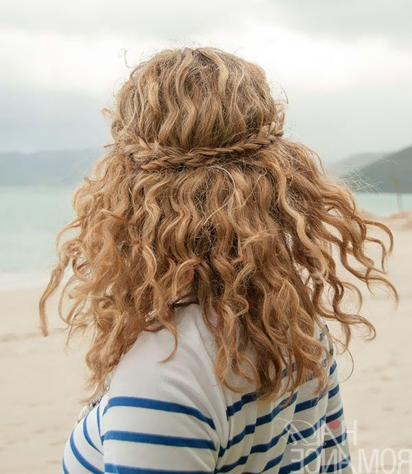 Easy Braids For Curly Hair – The Fashion Spot With Braided Along The Way Hairstyles (View 13 of 25)