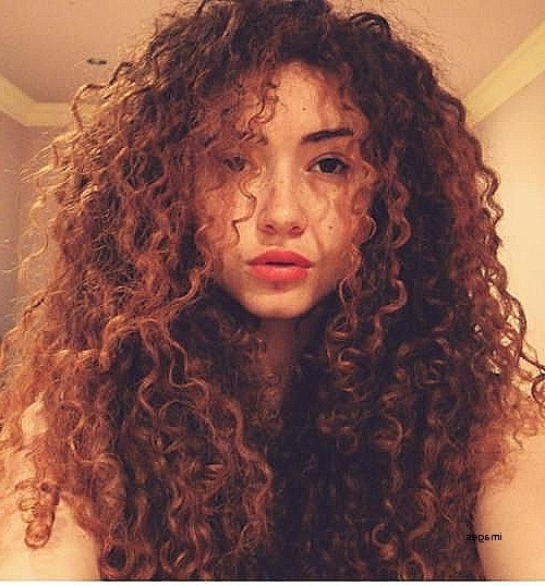 Elegant Puffy Curly Hairstyles Curly Hairstyles Puffy Curly Pertaining To Botticelli Ponytail Hairstyles (View 17 of 25)