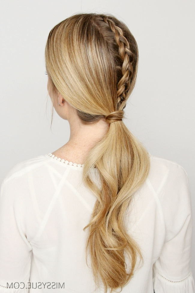 Four Dutch Braids Archives | Missy Sue For Pony Hairstyles With Accent Braids (View 19 of 25)