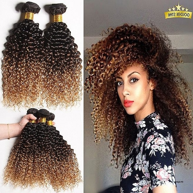 Fresh Blonde Curly Weave Hairstyles Curly Hairstyles Blonde Curly With Curly Blonde Ponytail Hairstyles With Weave (View 18 of 25)