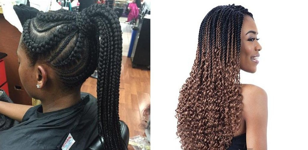 Ghana Braids. African Braid Hairstyles For Women. 8.2 | Seedroid throughout Chunky Black Ghana Braids Ponytail Hairstyles