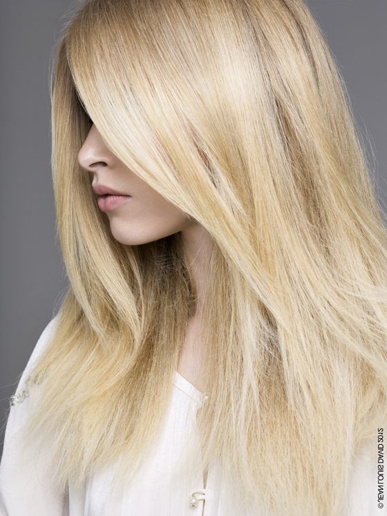 Golden Blonde Hair With Platinum Highlights - Best Image Of Blonde with regard to Light Golden Blonde With Platinum Highlights