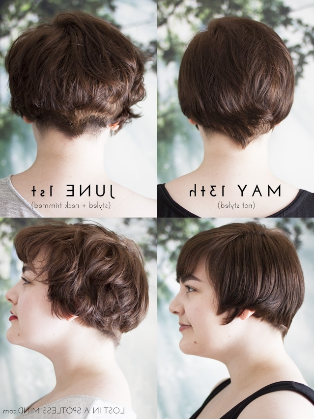 Growing Out A Pixie Cut: A Plan | Lost In A Spotless Mind With Most Up To Date Growing Out Pixie Hairstyles For Curly Hair (View 7 of 25)