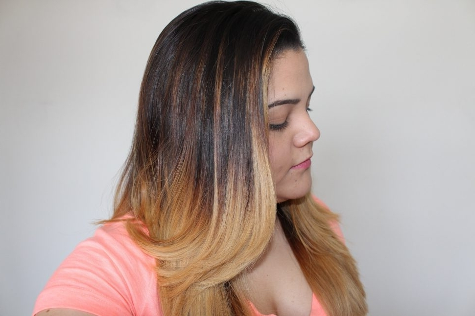 Hair Color : Scenic Diy Ombre Hair Tutorial Brunette To Blonde The Inside Shoulder Length Ombre Blonde Hairstyles (View 24 of 25)