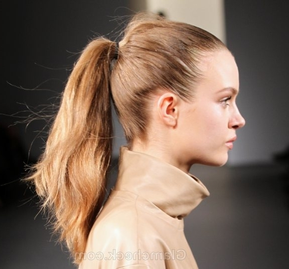 Hairstyle How To : Super Sleek Ponytail Version For Super Sleek Ponytail Hairstyles (View 6 of 25)