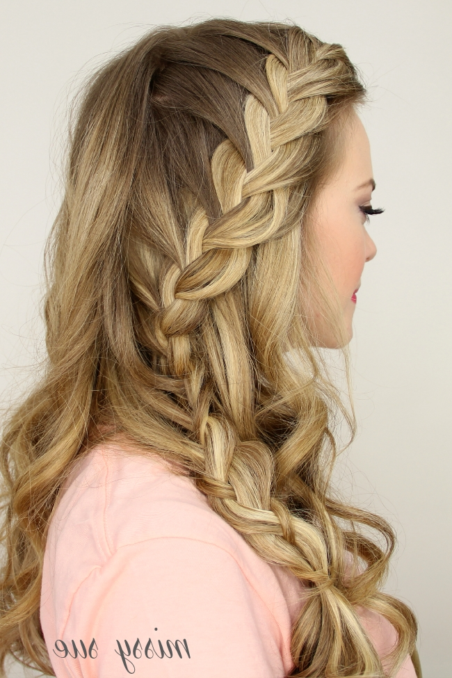 Half Up Side French Braid In Updo Pony Hairstyles With Side Braids (View 20 of 25)