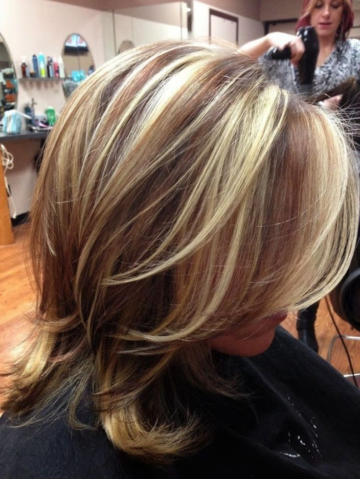 Highlights And Lowlights Ideas 4 Hair Color Highlight And Lowlight For Dark Locks Blonde Hairstyles With Caramel Highlights (View 19 of 25)