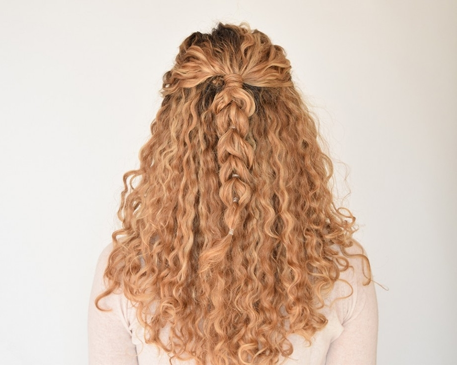 How To Create A Pull Through Braid In Naturally Curly Hair With Braids With Curls Hairstyles (View 22 of 25)