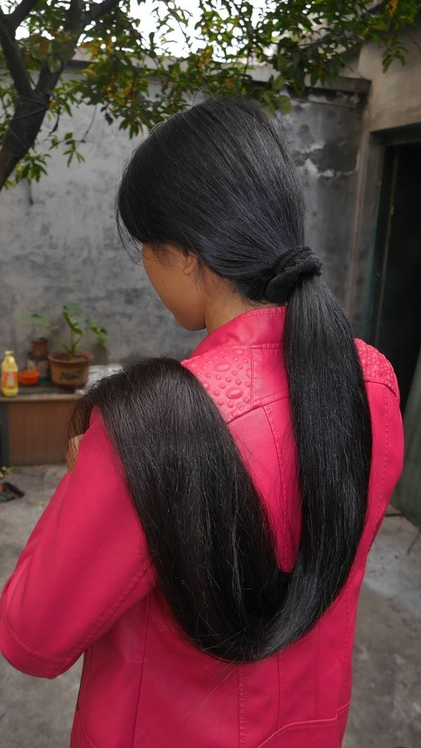 How To Grow Long Healthy Hair | Pinterest | Hair Ponytail, Ponytail Pertaining To Black And Luscious Pony Hairstyles (View 17 of 25)