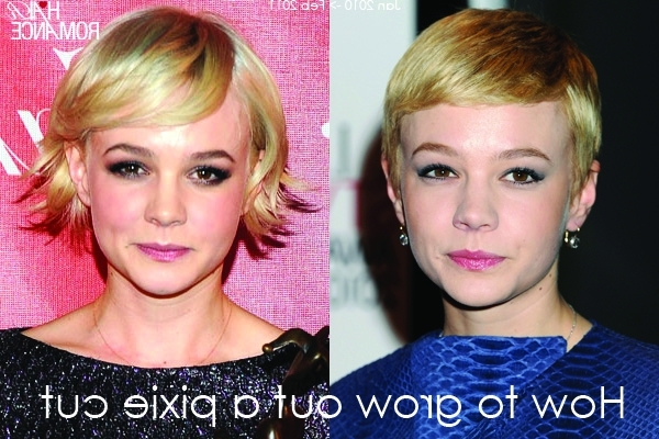 How To Grow Out A Pixie Cut – Hair Romance For Most Recent Growing Out Pixie Hairstyles For Curly Hair (View 14 of 25)