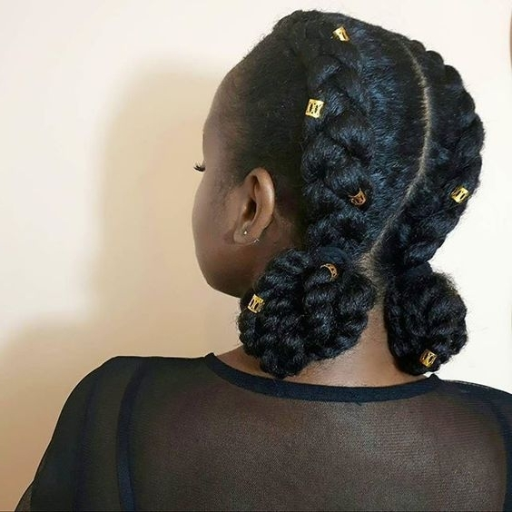 Lovely 6 Two Cornrows With Braiding Hair Ideas Within Two Braids In One Hairstyles (View 17 of 25)