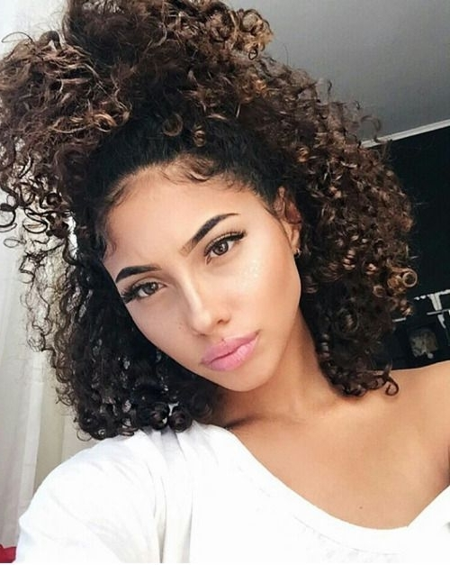 Naturally Curly Hair Ponytail In Respect Of Fine Hair Types With Regard To Natural Curly Pony Hairstyles With Bangs (View 21 of 25)