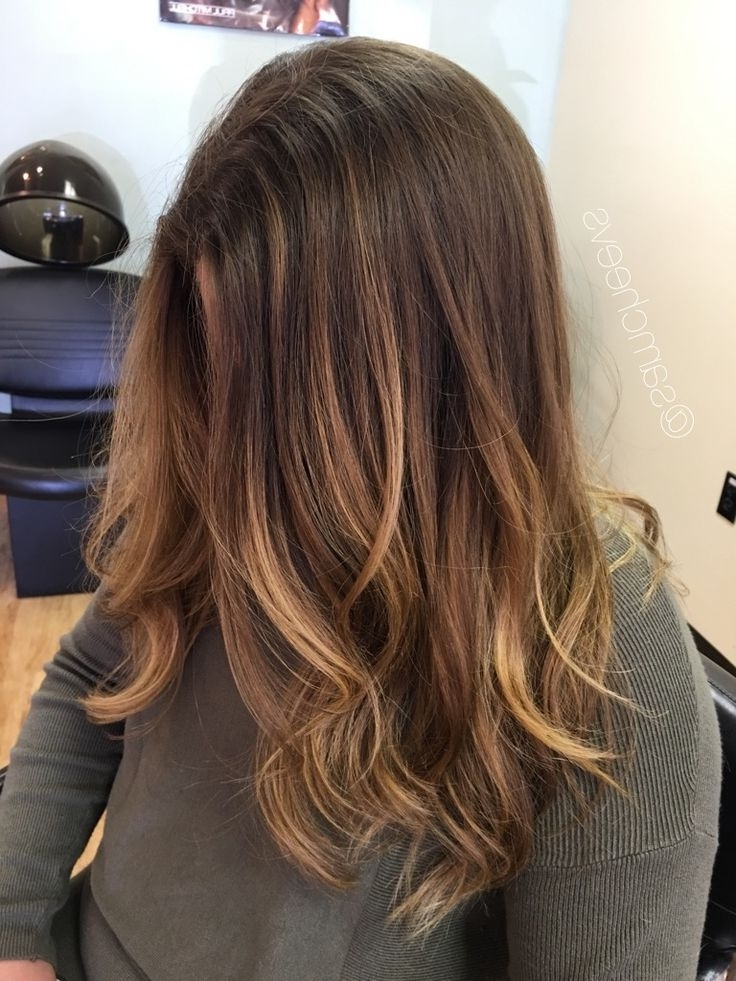 Ombre For Brown Hair . Brown Roots And Honey Blonde Ends (View 23 of 25)