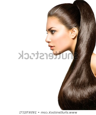 Ponytail Hairstyle Beauty Brunette Fashion Model Stock Photo (Edit With Regard To Ponytail Hairstyles For Brunettes (View 23 of 25)