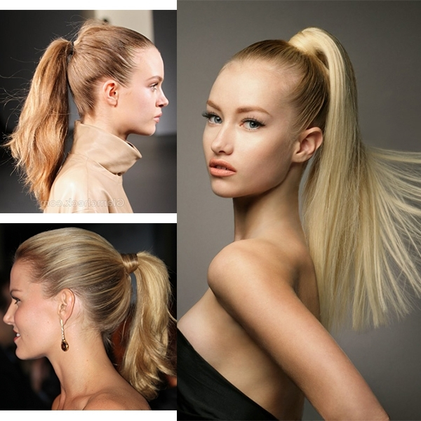 Ponytail Hairstyles Vpfashion For Two Toned Pony Hairstyles For Fine Hair (View 23 of 25)
