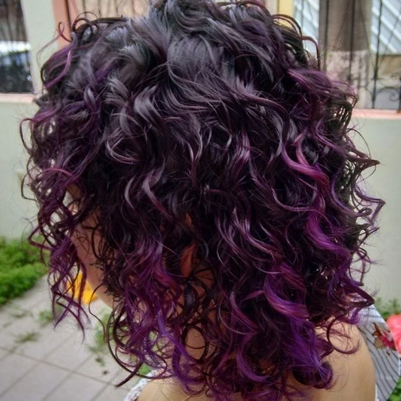 Purple Highlights On Curly Hair: | Color | Pinterest | Purple In Voluminous Platinum And Purple Curls Blonde Hairstyles (View 19 of 25)