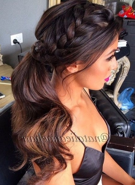 Small French Braid Down The Side With A Ponytail (View 9 of 25)