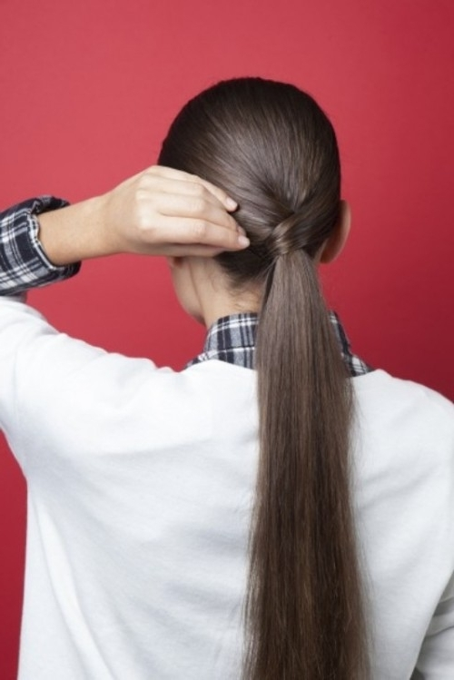 Stylish And Smooth Diy Low Ponytail Hairstyle – Styleoholic With Regard To Stylish Supersized Ponytail Hairstyles (View 8 of 25)