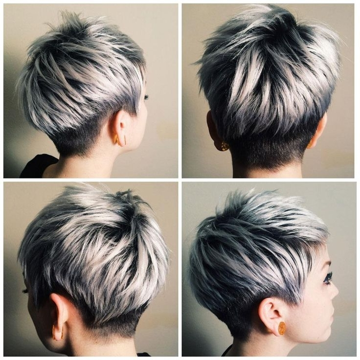 The Silver Journey – Career In 2018 | Silver/platinum Hair Color Inside Most Popular Silver And Brown Pixie Hairstyles (View 2 of 25)