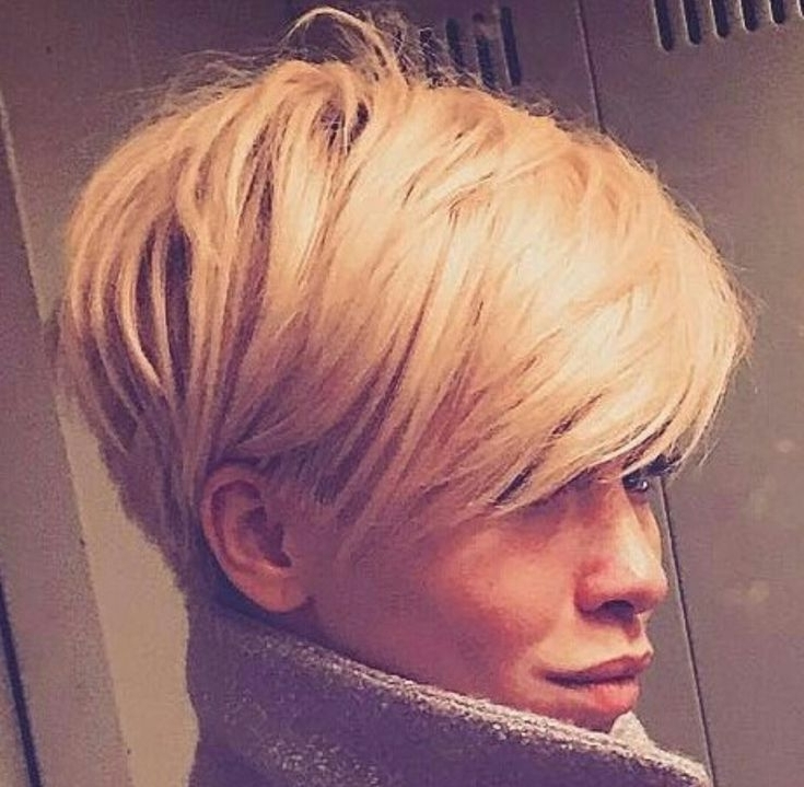 This Pin Was Discoveredpin     Hair Styles   Pinterest   Pixies Inside Most Up To Date Pixie Wedge Hairstyles (View 10 of 25)