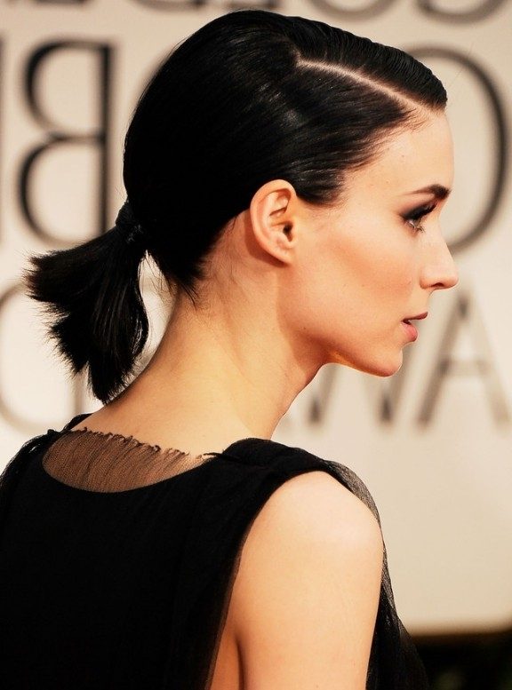 Top 25 Easy And Beautiful Ponytail Hairstyles Within Sleek Straightened Black Ponytail Hairstyles (View 23 of 25)