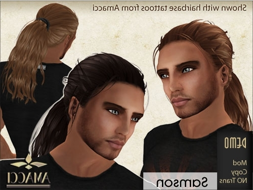 Two New Male Ponytail Hairstyles | Amacci For Mod Ponytail Hairstyles (View 19 of 25)
