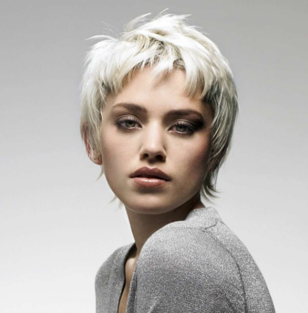 16 Gray Short Hairstyles And Haircuts For Women 2017 – Hairstyles Pertaining To Gray Short Hairstyles (View 4 of 25)