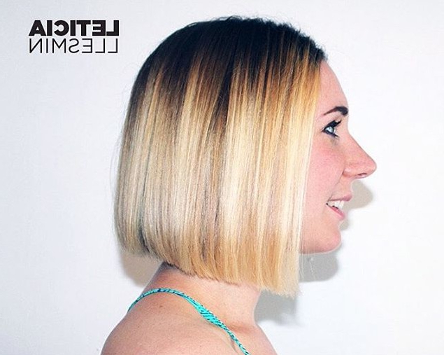 18 Popular Blunt Bob Hairstyles For Short Hair – Short Bob Haircuts 2017 Inside Straight Cut Bob Hairstyles With Layers And Subtle Highlights (View 15 of 25)
