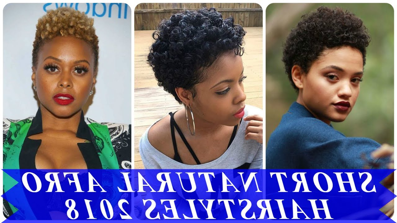 20 Beautiful Ideas About Short Natural African American Hairstyles Within Short Haircuts For Black Women With Natural Hair (View 16 of 25)